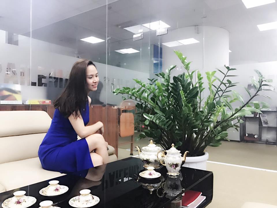 cây kim phát tài( cây kim tiền) - Công ty cây xanh Hồng Dương