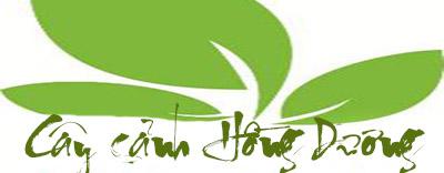 Công ty cây xanh Hồng Dương